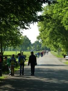 Maarkelsnieuws-kosterskoele-wandel4daagse-20150528jhbg6